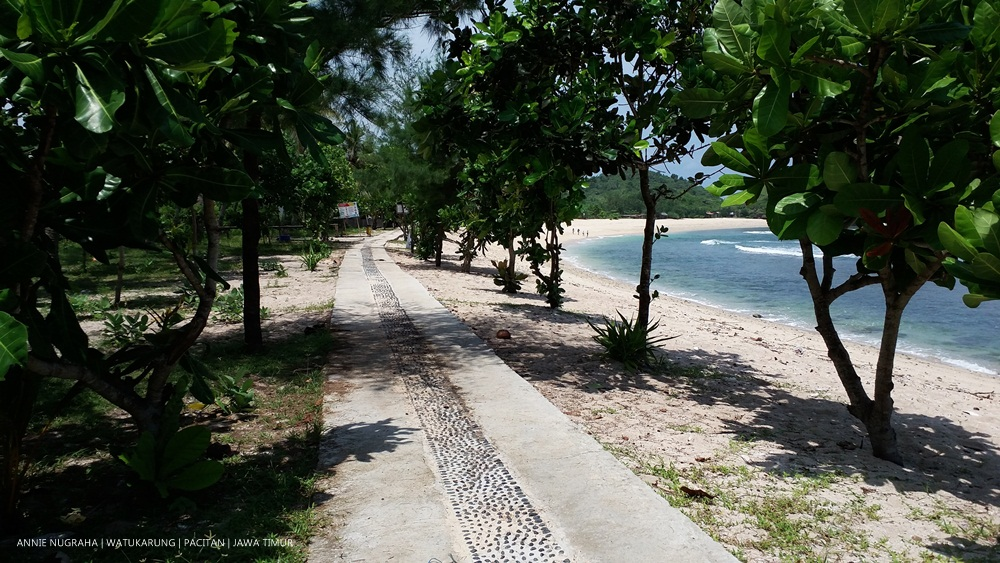 Hanyut Dalam Lamunan di Pantai Watu Karung Pacitan