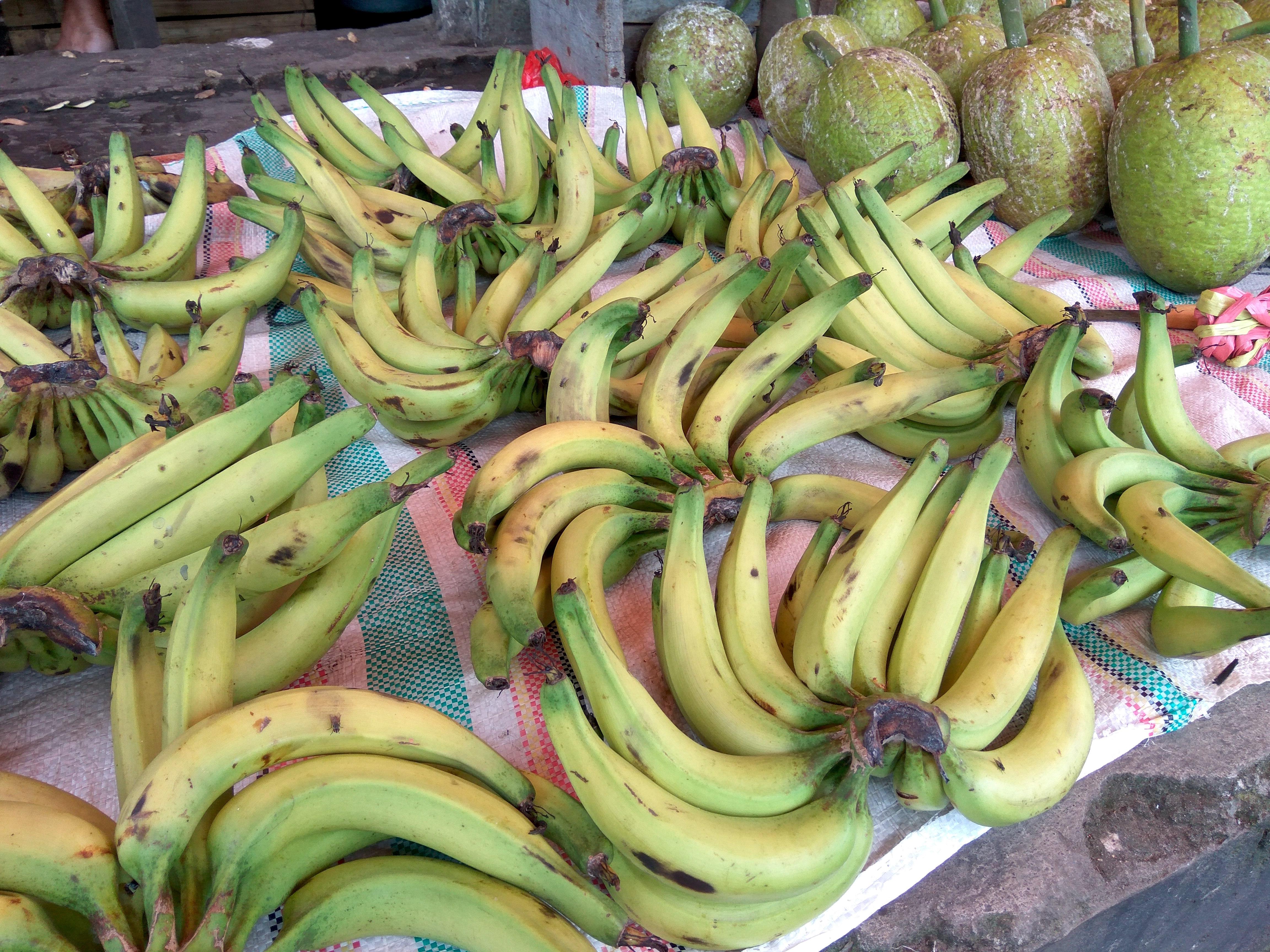 GOTO.  Pasar Tradisional Tidore.  Selalu Menarik Untuk Dikenang.