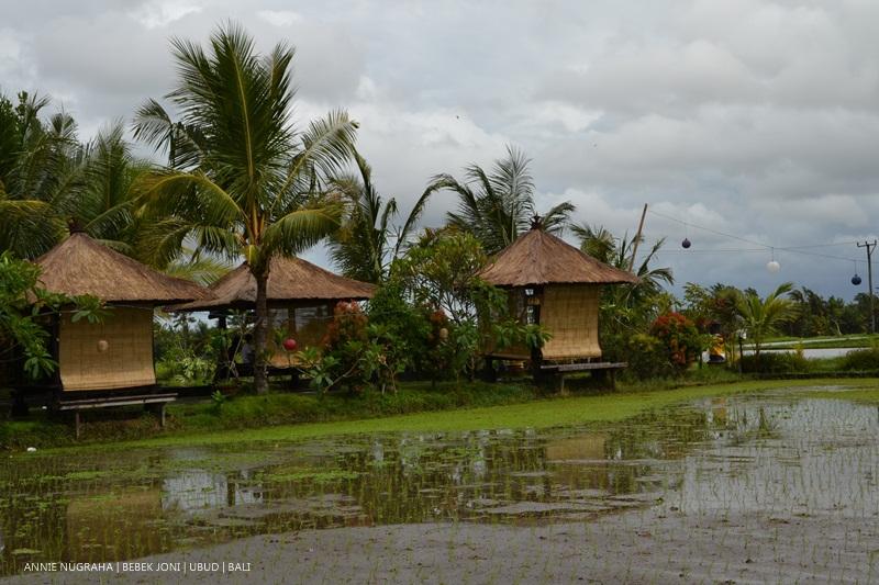 Bebek Joni Restoran, Ubud, BALI - kaya pemandangan di tengah persaingan