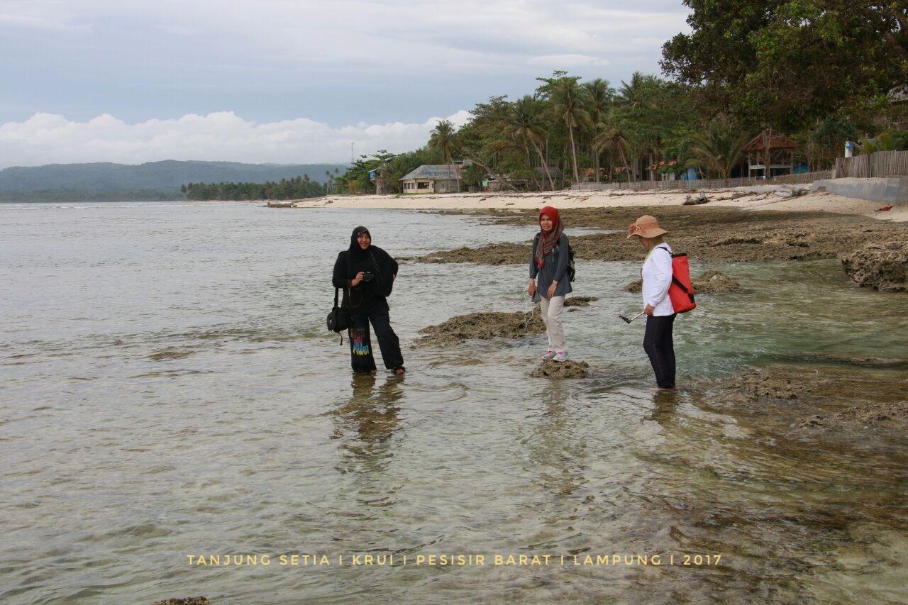 Tanjung-Setia-01.jpeg