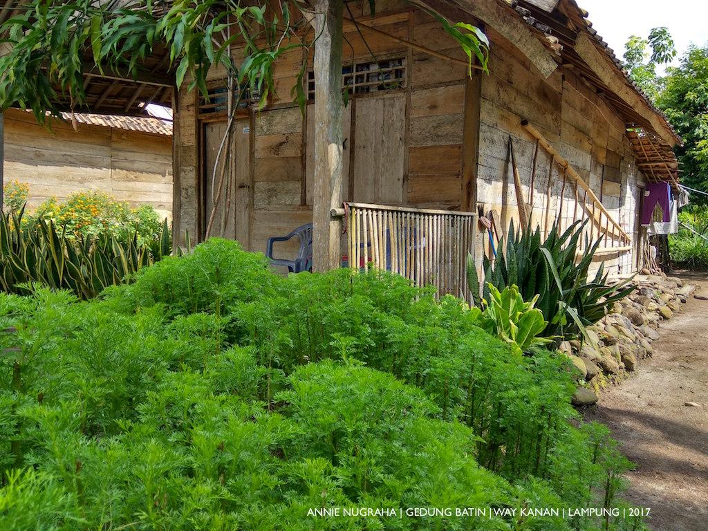 GEDUNG BATIN | Kampung Wisata Lestari Way Kanan | Kampung Sarat Sejarah dan Budaya