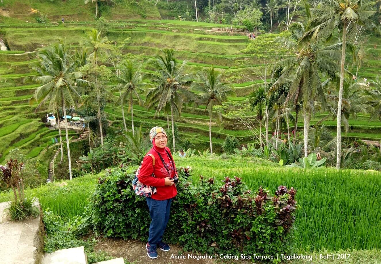 Indahnya Sawah Terasering di Ceking Rice Terrace | Tegallalang | BALI