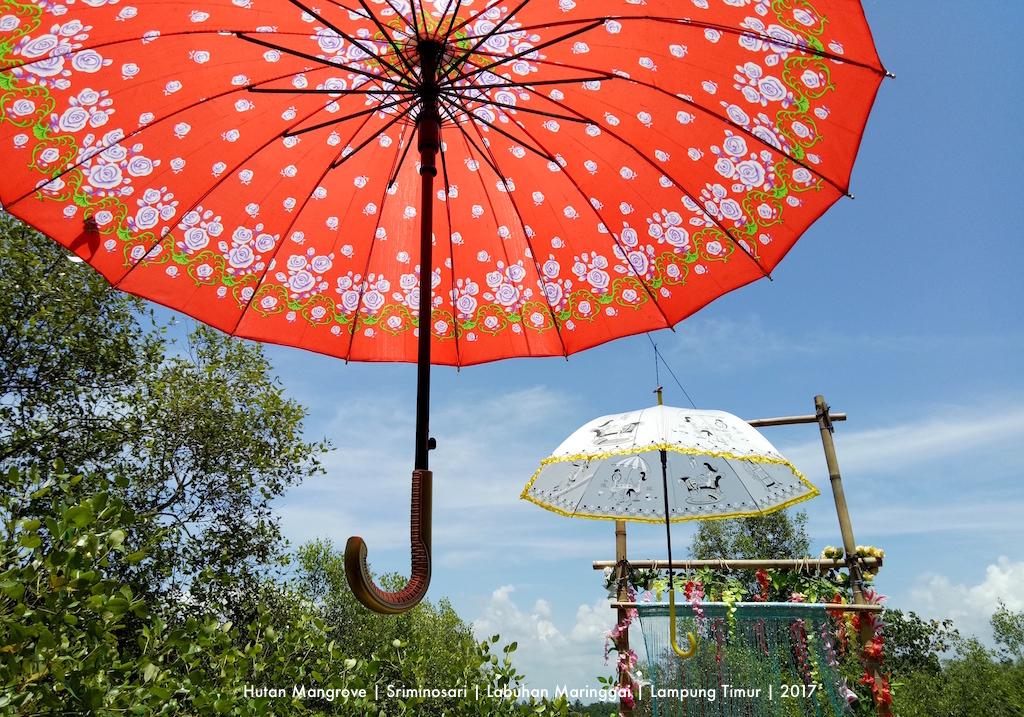 Menjejak Keindahan EKOWISATA MANGROVE SRIMINOSARI, Labuhan Maringgai, Lampung Timur