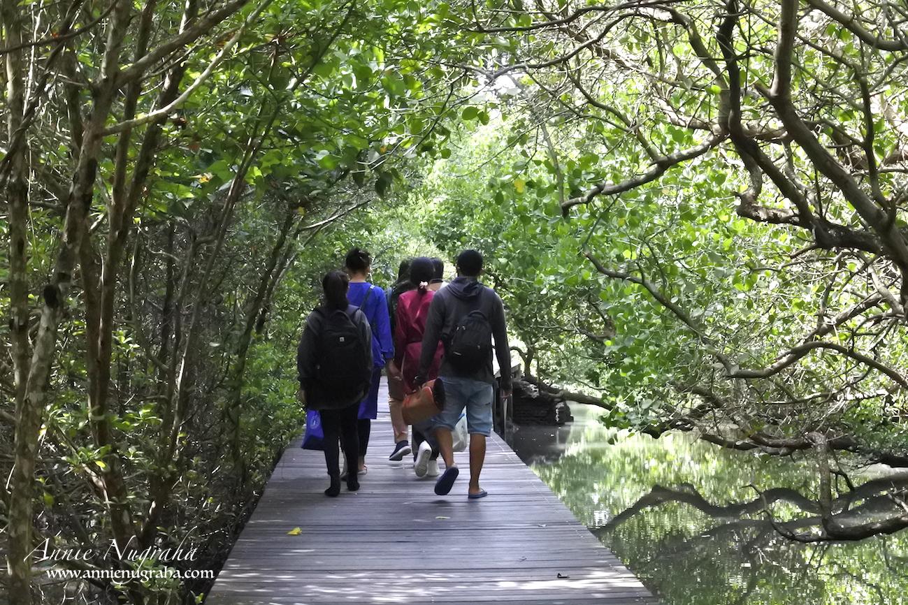 Taman Hutan Raya (TAHURA) Ngurah Rai | Destinasi Wisata Alam Hutan Mangrove | BALI