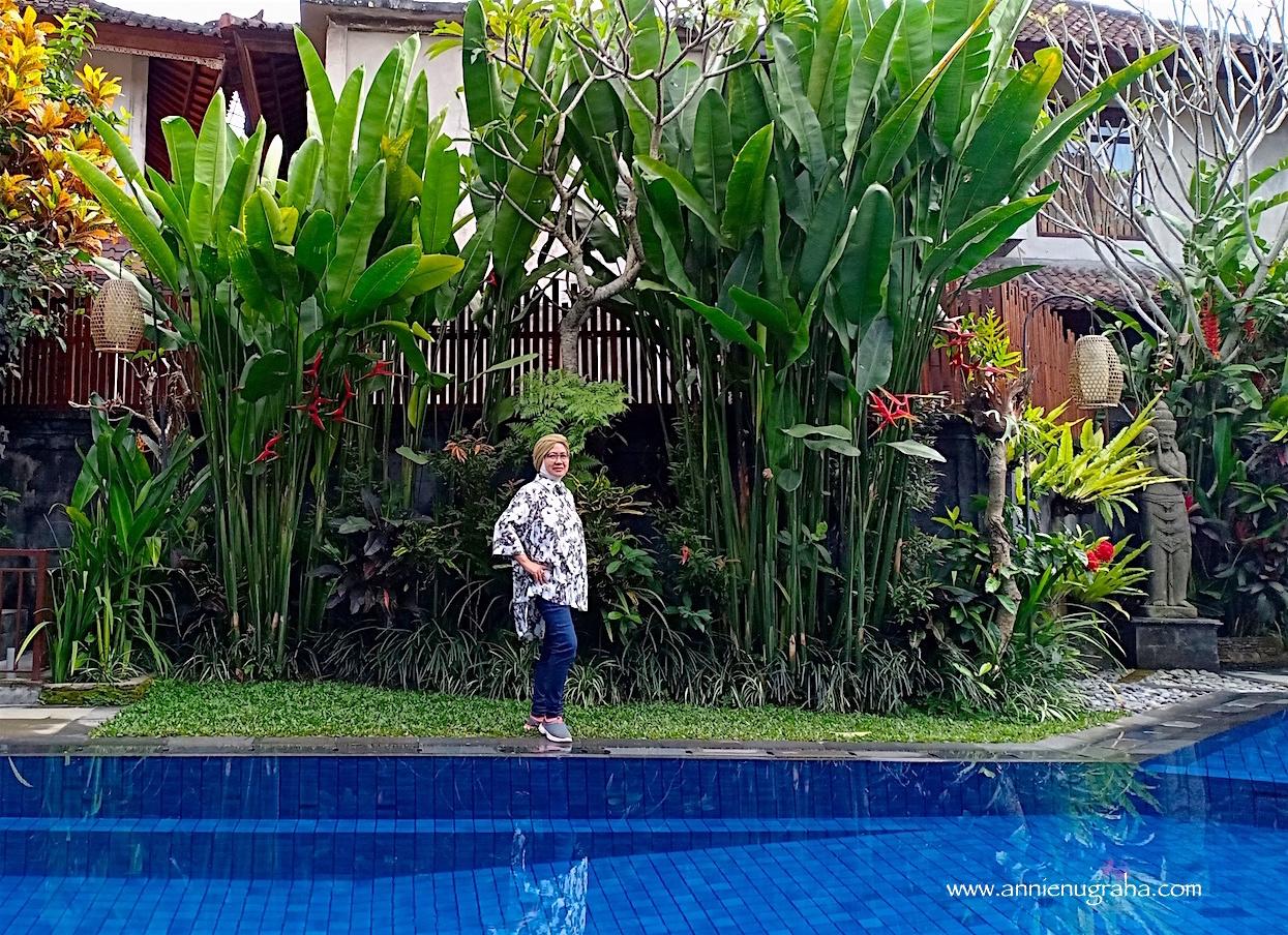 Ubud Terrace Bungalow. Menikmati Akhir Pekan yang Hening, Tenang, dan Damai di Ubud